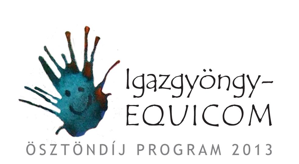 Az Igazgyöngy-EQUICOM ösztöndíjasainak bemutatása